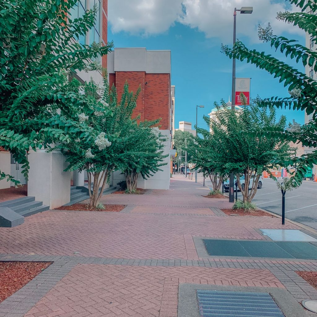 A sidewalk near the Rosa Park Museum at Troy University